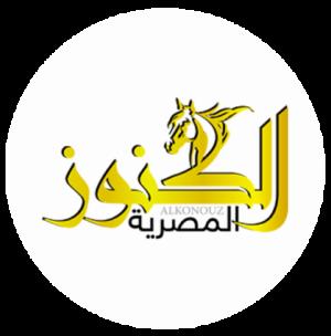 الكنوز المصرية