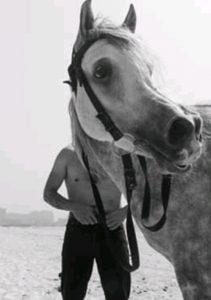 الحصان بحر