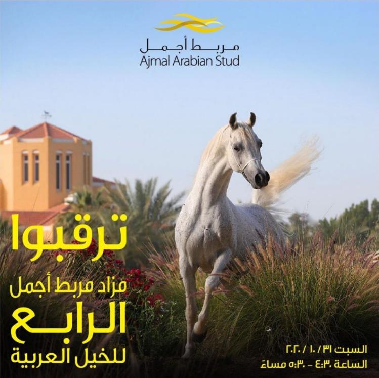 كتاب انساب الخيل المصرية